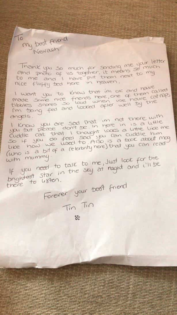 girl-sent-letter-to-cat-in-heaven-nevaeh-lowe-3