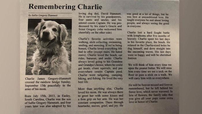 dog-obituary-charlie-2
