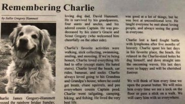 dog-obituary-charlie