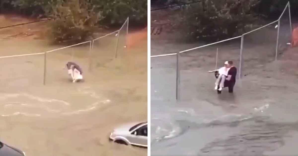 man-carries-grandma-in-flood-waters
