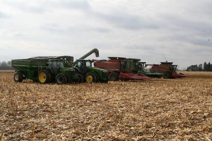 farmers-harvest-crop-for-neighbor