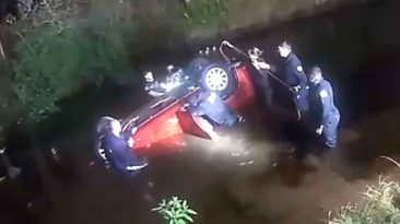 florida-family-car-rescue