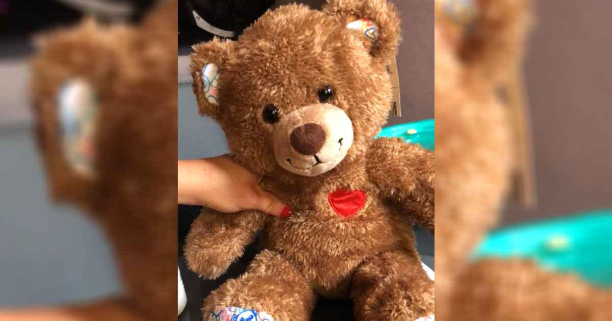 teddy-bear-surprise