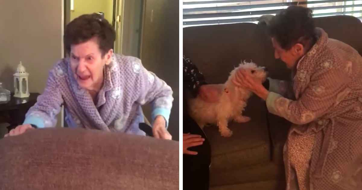 daughter-surprises-mother-with-rescue-dog
