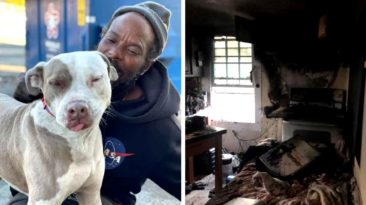 homeless-man-rescues-animals-w-underdogs-fire