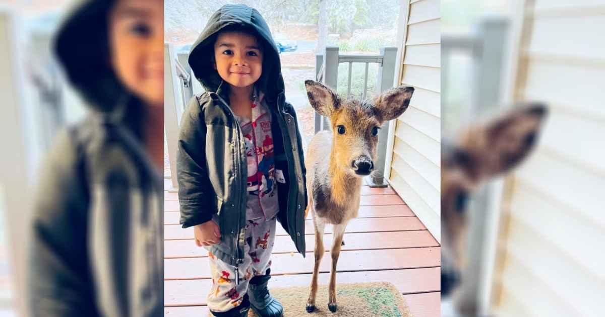 boy-with-deer