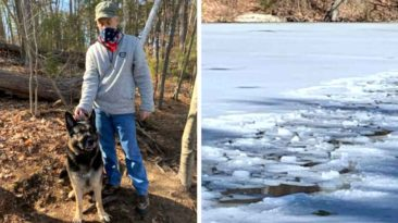 dog-helps-rescue-man-fell-through-ice