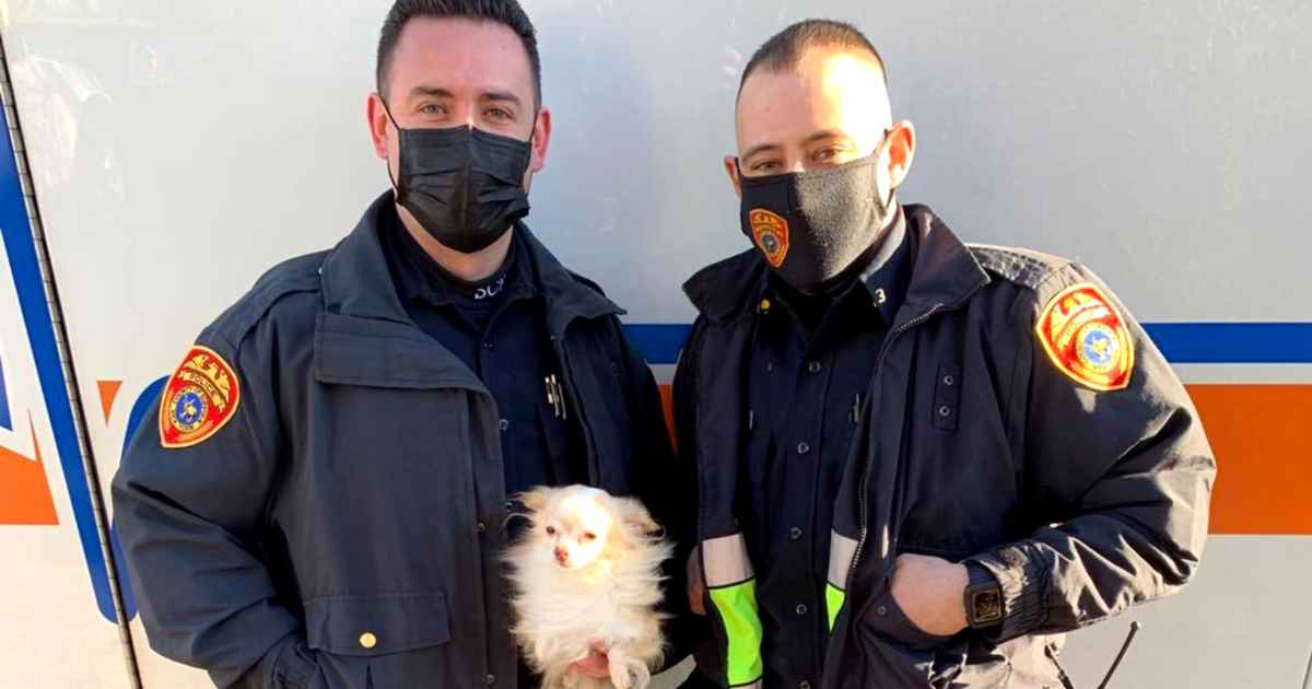 police-officers-rescue-pets-from-house-fire