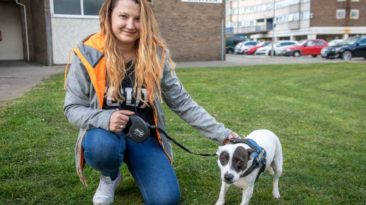 dog-saves-owner-from-knife-attack-amy-edmonson