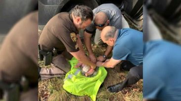deputies-rescue-abandoned-baby-michigan