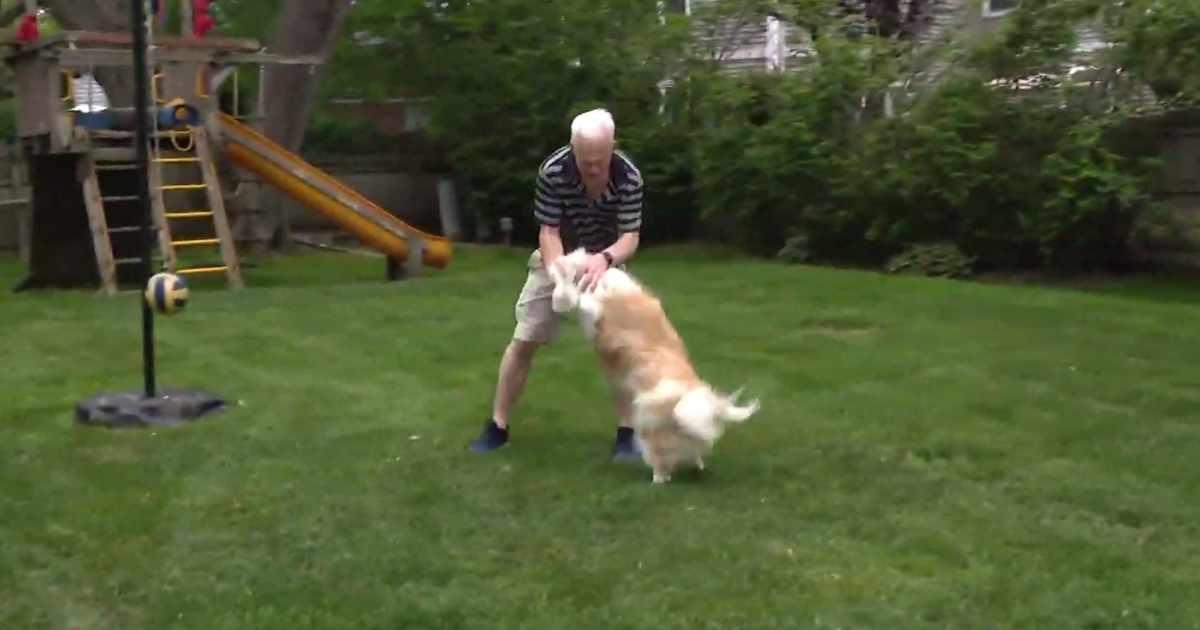deaf dog reunited with deaf owner