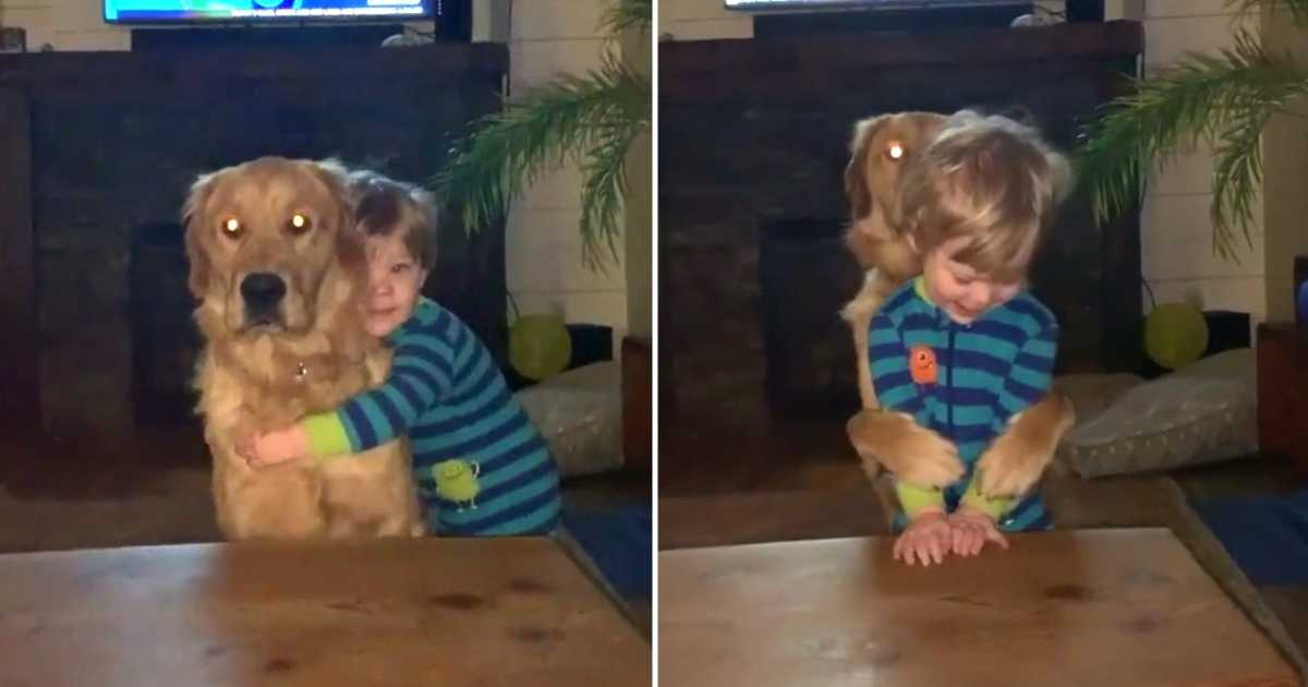 dog-hugs-toddler