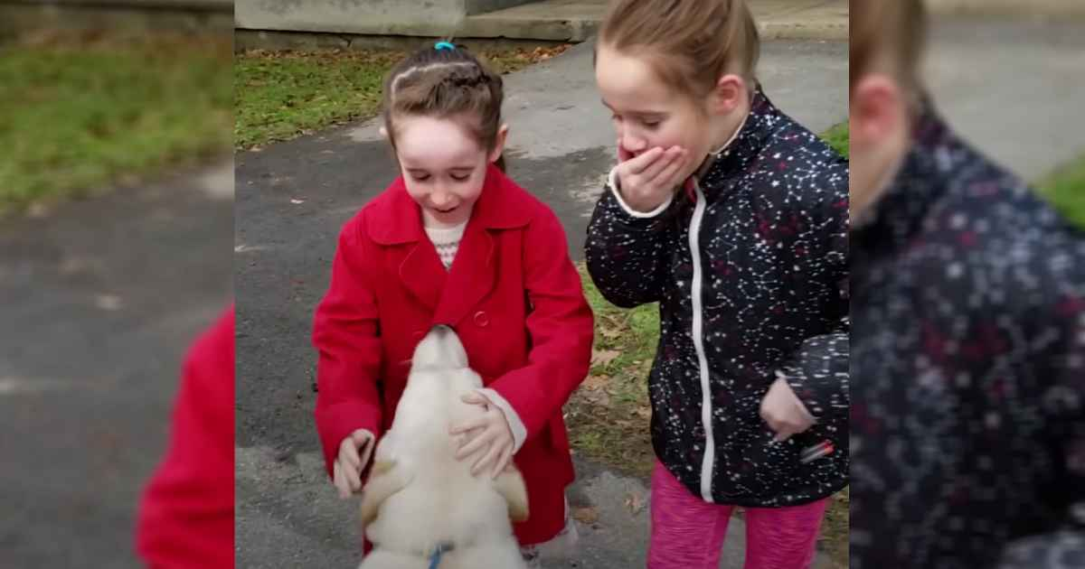 mom-surprises-daughters-with-shelter-dog