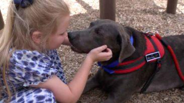 dog-comforts-crying-girl-raelynn-nast