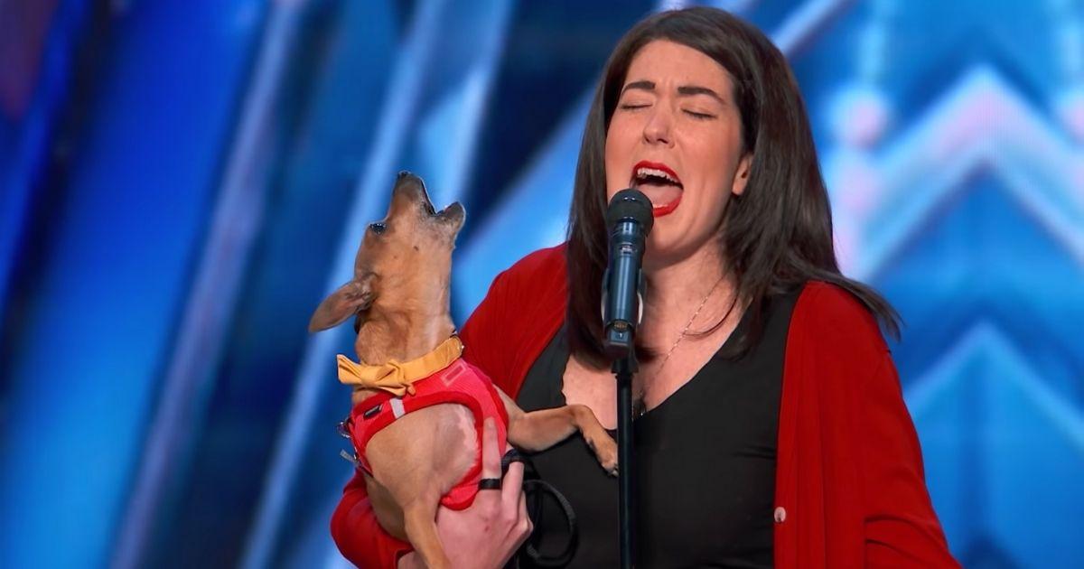 singing dog casper agt