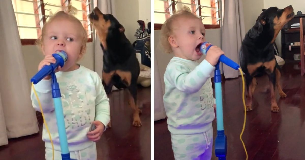 baby girl sings with dog