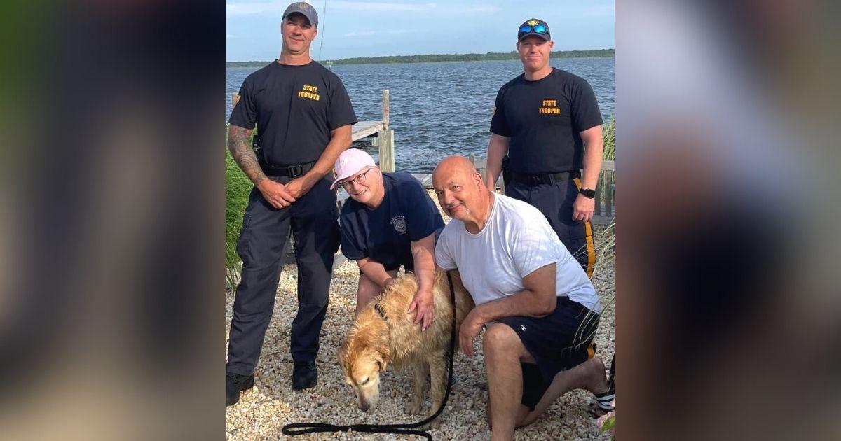golden retriever rescued NJ bay