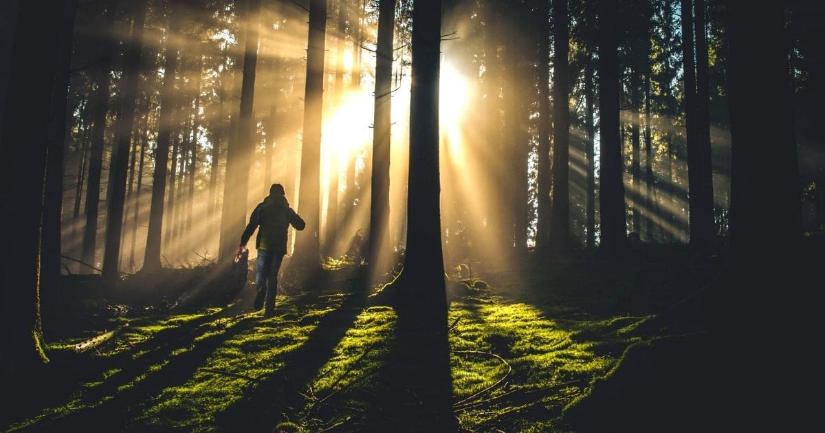 walking in the light of god bible verses