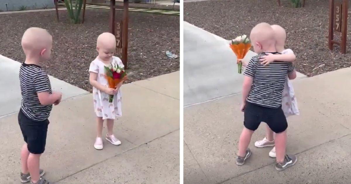 toddlers reunited after battling cancer