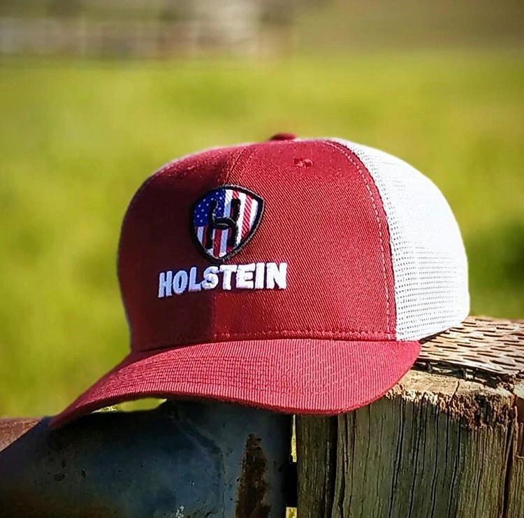 Boné Holstein