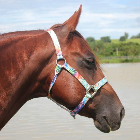 Cabresto Boots Horse Folhagem Colorida