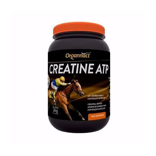 Creatina ATP 2kg
