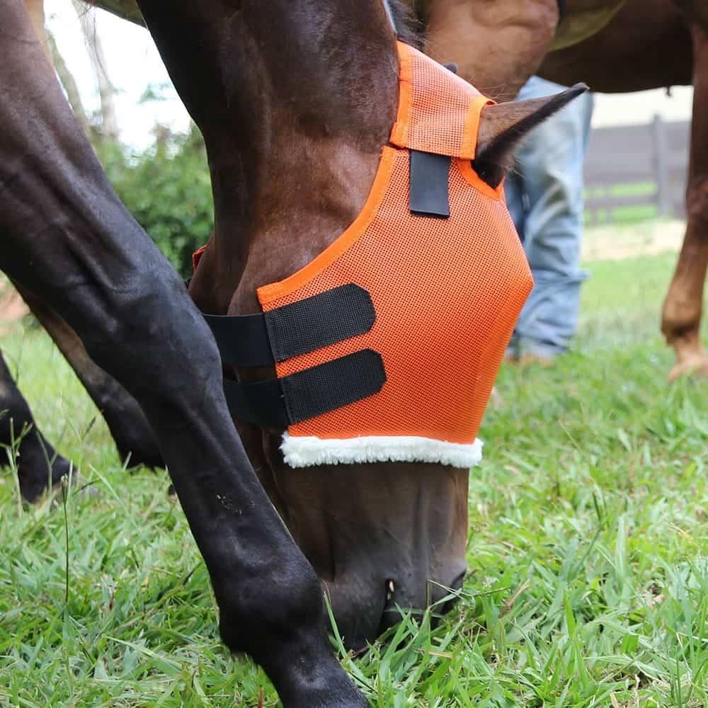 Máscara Para Cavalo Boots Horse Laranja
