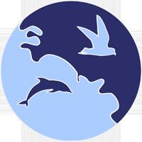 Observations en Bretagne (dauphins et oiseaux)