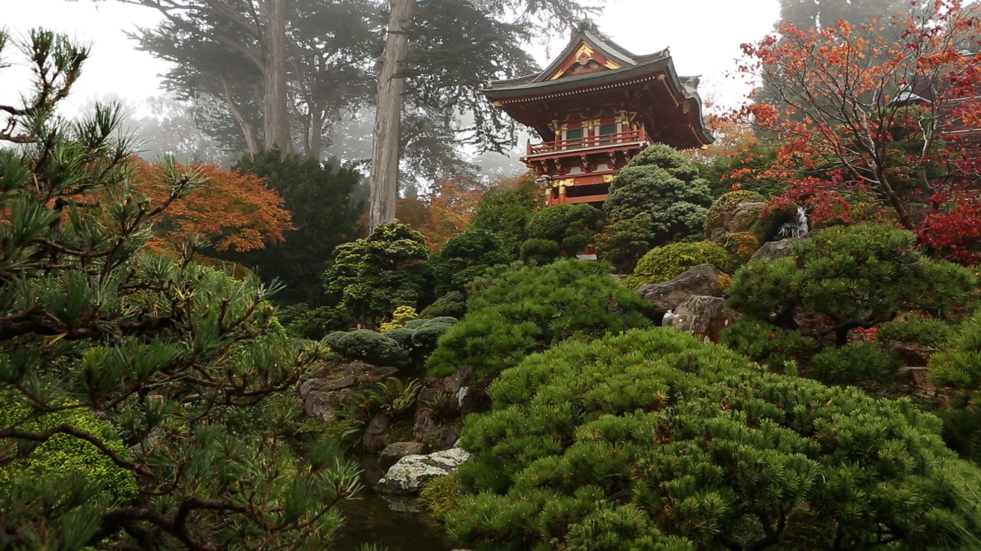 JAPANESE GARDENS IN AMERICA - keeping the culture alive - - FilmFreeway