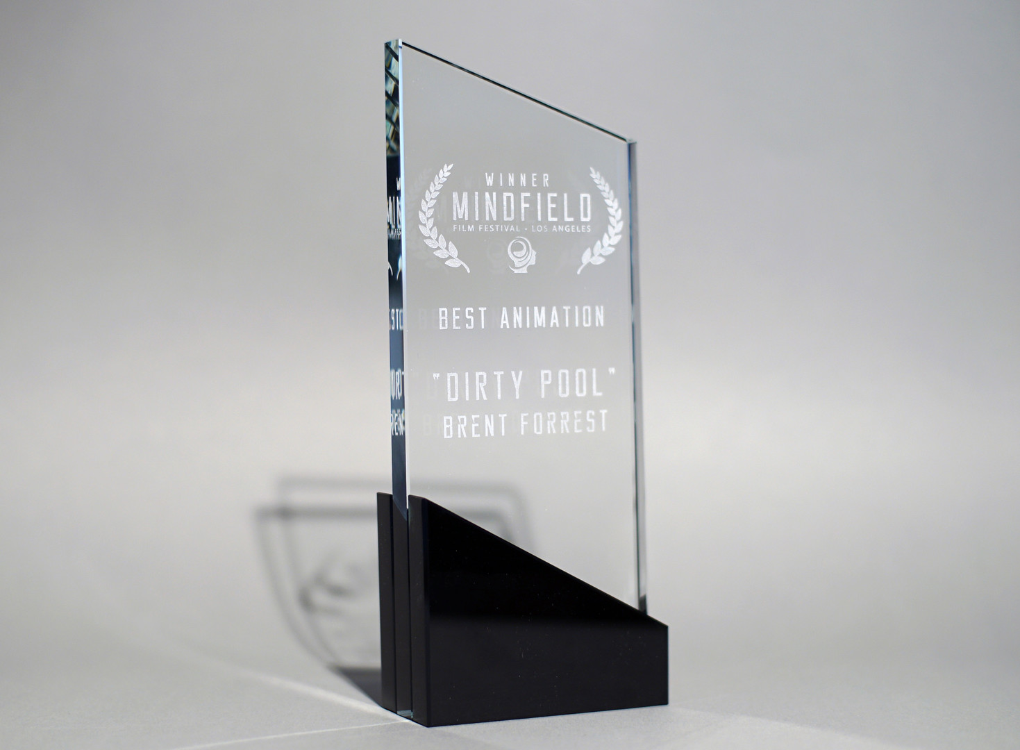 Mindfield trophy