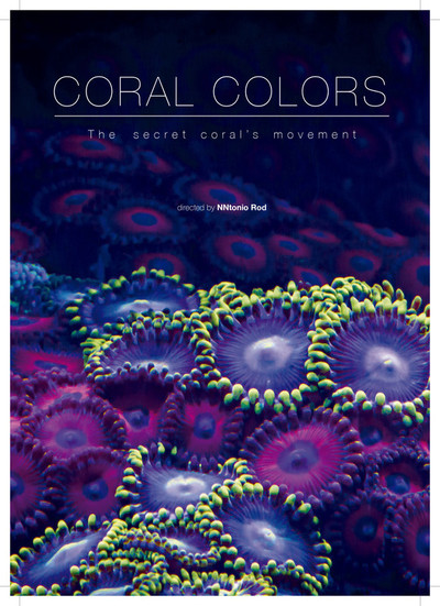 Cartel coral colors