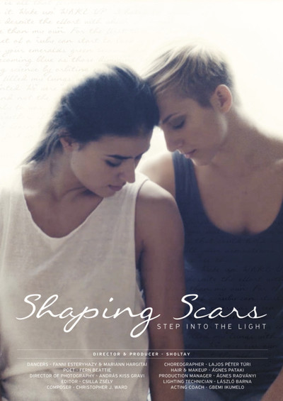 Shaping scars a4 2