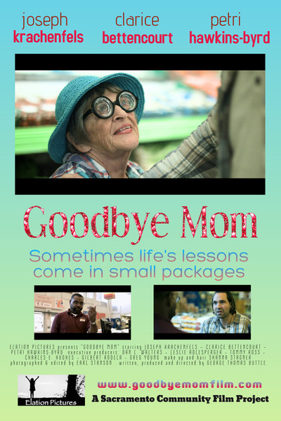 Goodbye mom movie poster
