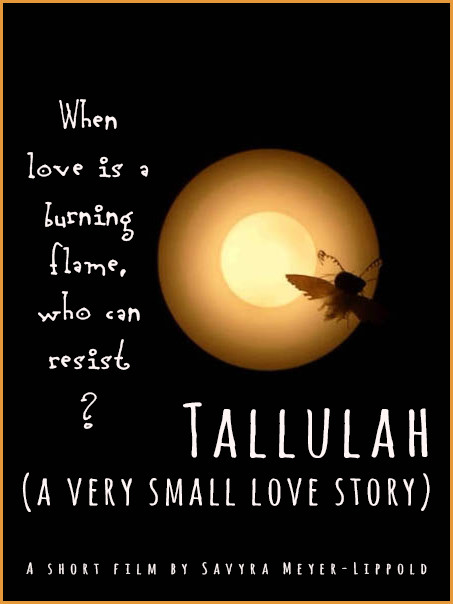 Tallulah (a very small love story) - FilmFreeway