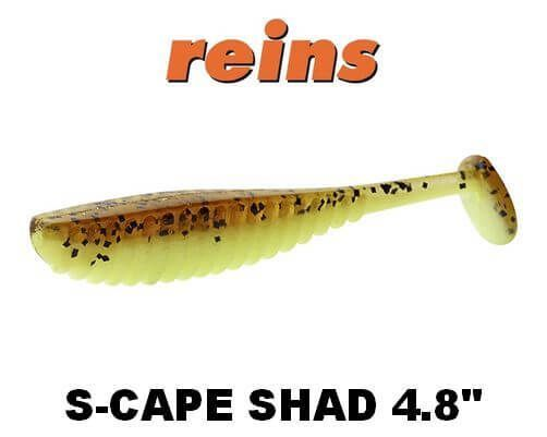 Reins S cape shad