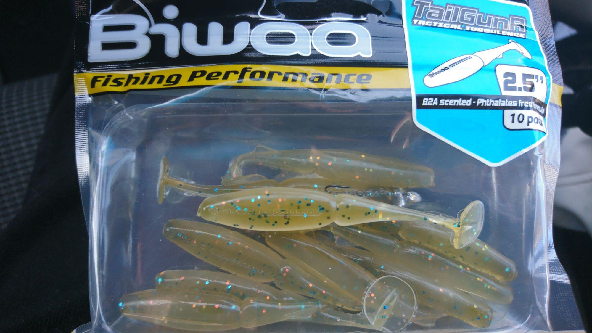 Biwaa Fishing Performance tailgunR 2.5''