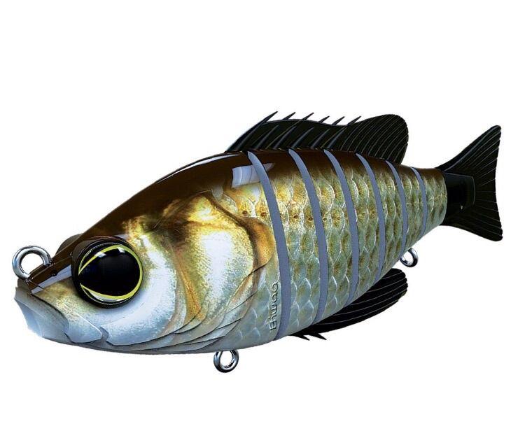 Biwaa Fishing Performance Seven