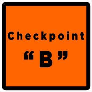 Checkpoint C