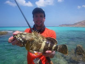 Malabar Grouper — Nicolas Xmylife