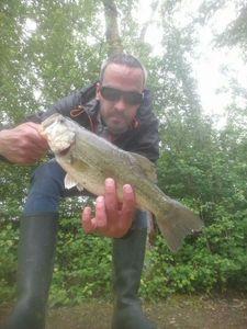 Smallmouth Bass — Guillaume Fishbreizh