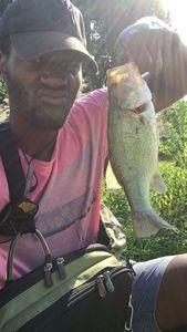 Largemouth Bass — Yohan Poulier