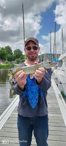 Northern Pike — Guillaume Dnl