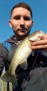 Largemouth Bass — Fredo Fishing