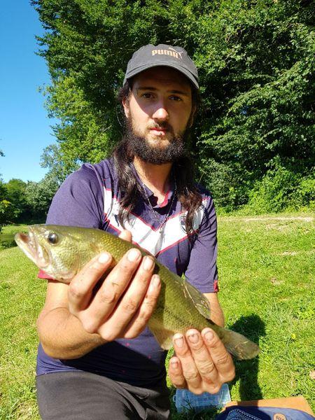 Smallmouth Bass by Sébastien Coilier | 0