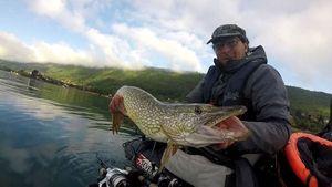 Northern Pike — Mickael Rdf