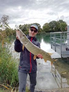 Northern Pike — Valentin Salvi