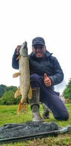 Northern Pike — Karl Ecotiere