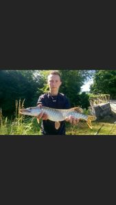 Northern Pike — Florian Turgnier