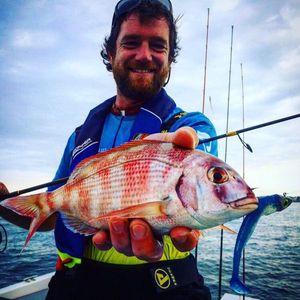 Red Porgy — Yagofish