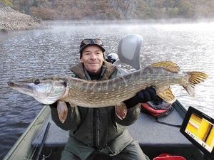 Northern Pike — Thierry COMBES